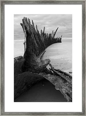 Trinculo  Framed Print by Heather Provan