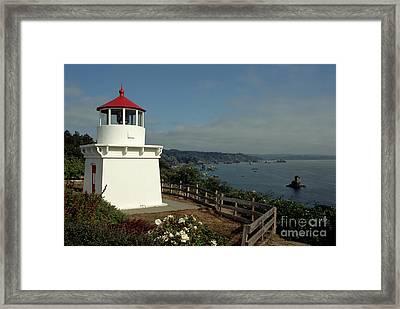 Trinidad Light Framed Print by Sharon Elliott