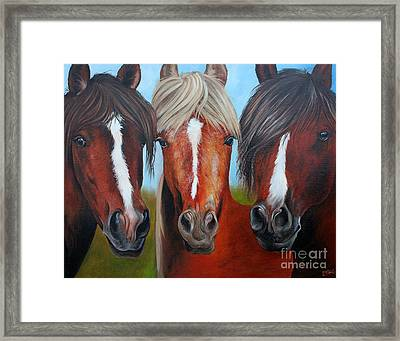 Framed Print featuring the painting Trio by Debbie Hart