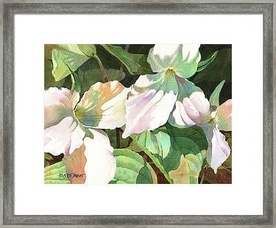 Trio Framed Print by Kris Parins