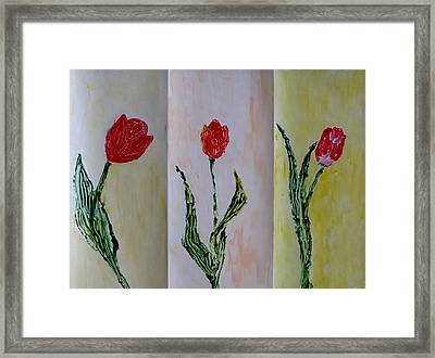 Trio Of  Red Tulips Framed Print by Sonali Gangane