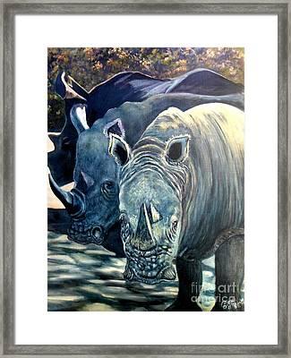 Trio Of Rhino Framed Print by Caroline Street