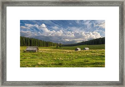 Trio Framed Print by Robert Krajnc