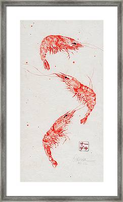 Triple Shrimp Framed Print by Odessa Kelley