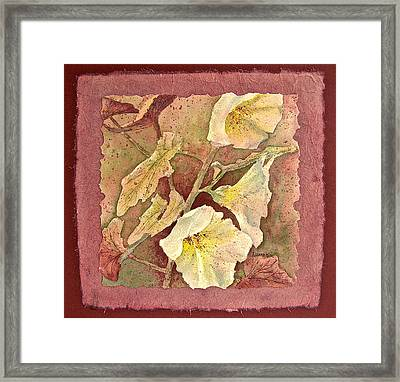 Triple White Framed Print by Carolyn Rosenberger