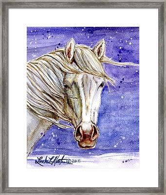 Tripod Wild Stallion Of The Sand Wash Basin Framed Print