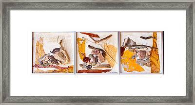 Triptic Framed Print by Carmen Williams
