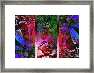 Triptych Chic Framed Print by Paula Ayers