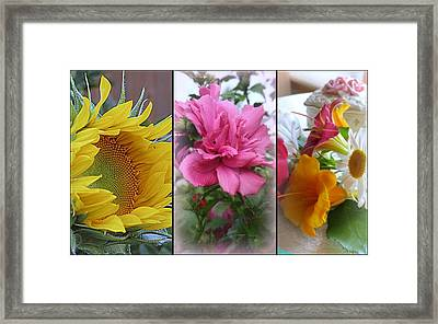 Triptych Of Summer Florals Framed Print by Kay Novy