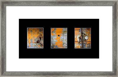 Triptych Old Metal Series Framed Print by Ann Powell