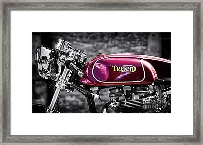 Triton Framed Print by Tim Gainey
