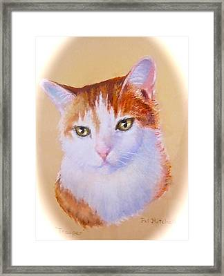 Framed Print featuring the painting Trooper by Patricia Schneider Mitchell