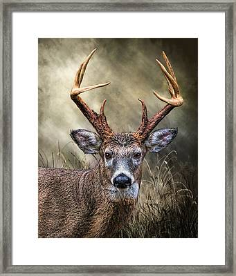 Framed Print featuring the digital art Trophy 10 Point Buck by Mary Almond