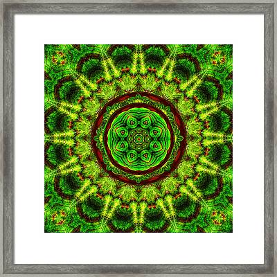 Tropic Leaf Pattern Mandala Framed Print