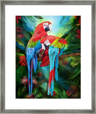 Tropic Spirits - Macaws Framed Print by Carol Cavalaris
