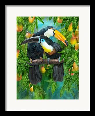 Mango Mixed Media Framed Prints