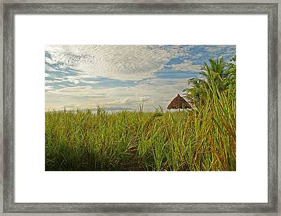 Framed Print featuring the photograph Tropical Beach Landscape by Peggy Collins