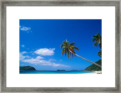 Tropical Beach With Coconut Palms Framed Print