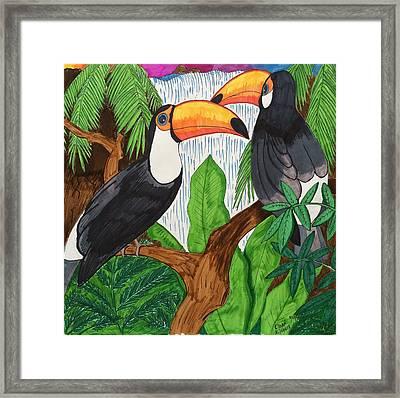 Toucans Framed Print by Ethan Altshuler