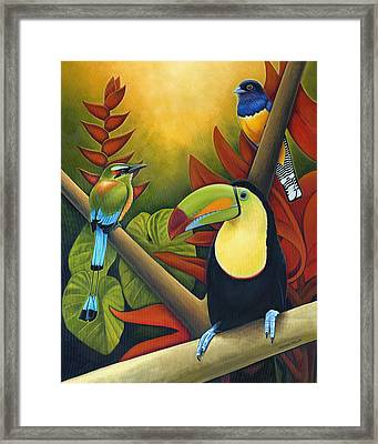 Tropical Birds Framed Print