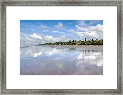 Tropical Bliss Framed Print by Kandy Hurley