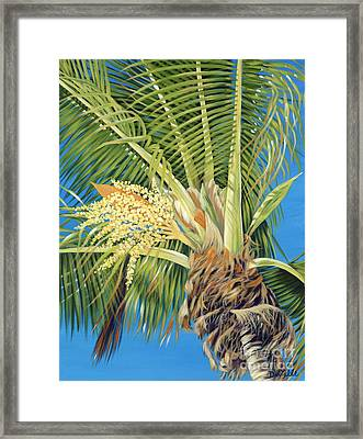 Tropical Bloom Framed Print by Danielle  Perry