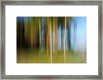 Tropical Brush Framed Print