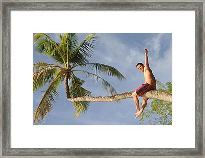 Framed Print featuring the photograph Tropical Climb by Paul Miller