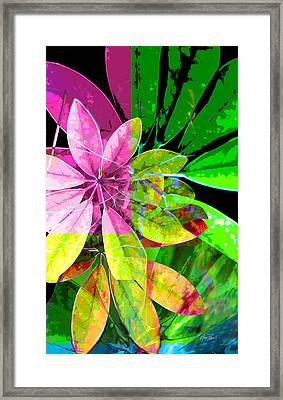Tropical Delight Two Framed Print by Ann Powell