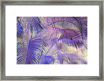 Tropical Embrace Framed Print