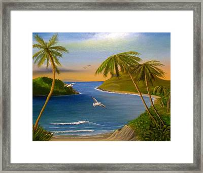 Tropical Escape Framed Print by Sheri Keith