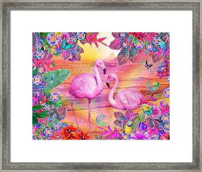 Tropical Flamingo Framed Print by Alixandra Mullins