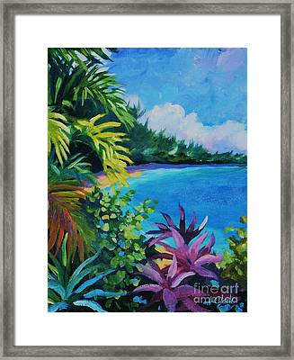 Tropical Flora Framed Print by John Clark