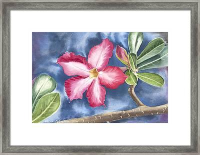 Tropical Flower Framed Print