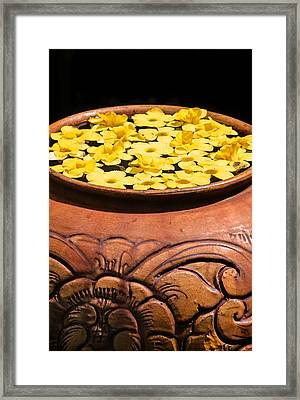 Framed Print featuring the photograph Tropical Flower Pot by Rob Tullis