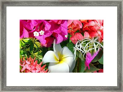 Tropical Flower Power 2 Framed Print