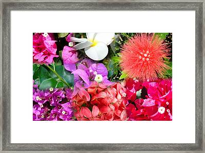 Tropical Flower Power Framed Print