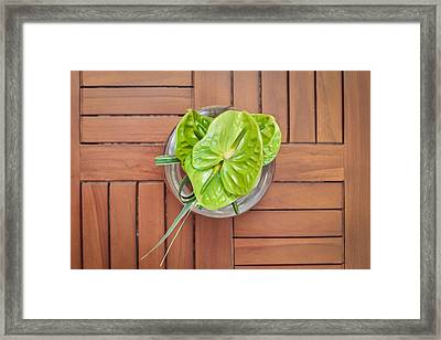 Tropical Flower Framed Print by Tom Gowanlock