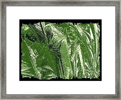 Tropical Foliage Framed Print by Will Borden