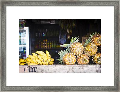 Tropical Fruits Framed Print by Tuimages