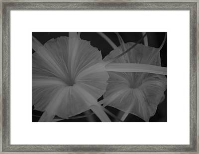 Framed Print featuring the photograph Tropical Garden by Miguel Winterpacht