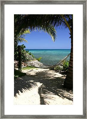 Tropical Hammock Hideaway Framed Print by Darrin Aldridge