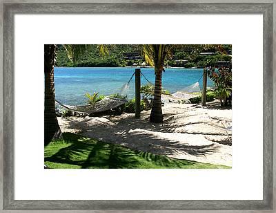 Tropical Hammocks Framed Print by Darrin Aldridge