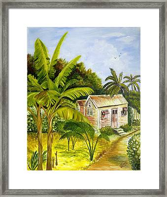 Tropical Haven Framed Print