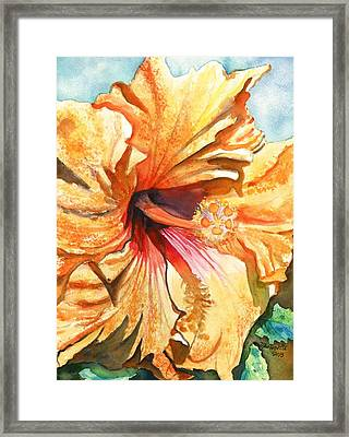 Tropical Hibiscus 3 Framed Print