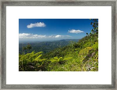 Framed Print featuring the photograph Tropical Highlands by Jose Oquendo