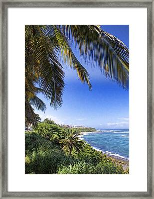 Tropical Holiday Framed Print by Daniel Sheldon