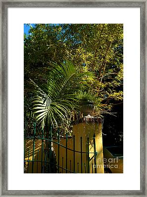 Tropical Invitation Framed Print by Susanne Van Hulst