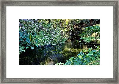 Tropical Framed Print by Kristin Elmquist