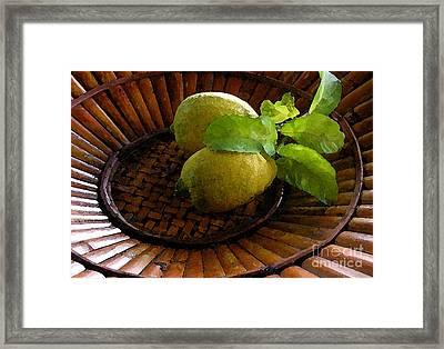 Tropical Lemons Framed Print by James Temple